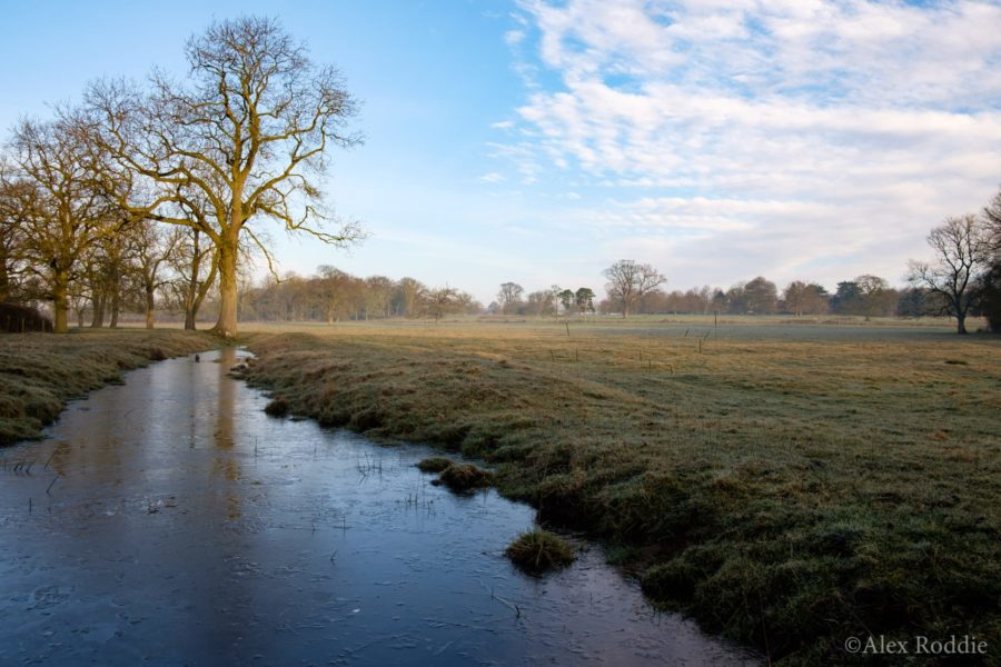 Frost at Gunby Park